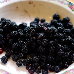 Blackberry Jam Making