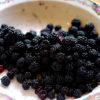 Blackberry Jam Making