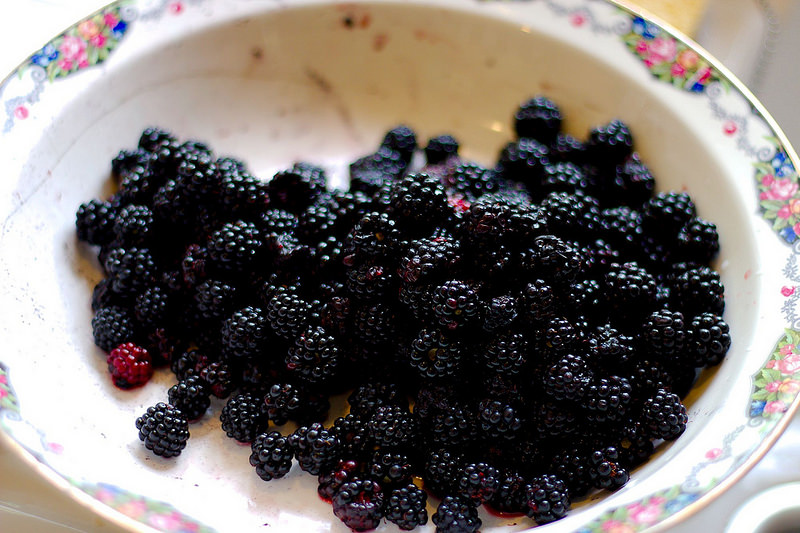 Blackberry Jam-Making on Bere Island [13-14 September 2019]