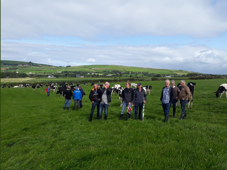 dairy farmers ireland